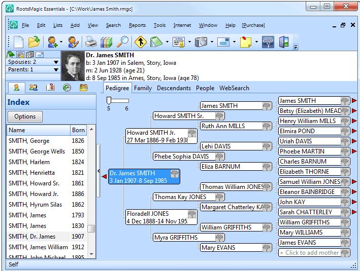 RootsMagic программа для составления генеалогического дерева