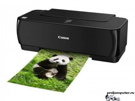 Не печатает принтер: что делать?