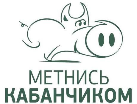 Обзор нужного сервиса «Метнись Кабанчиком»