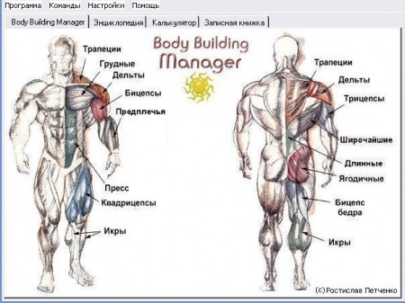 Программа для бодибилдинга - Body Building Manager 2.0